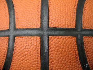 probasketballcoach